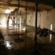 large_basement