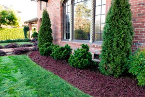 Landscaping Mulch