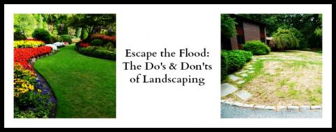 Do's and Dont's of Landscaping