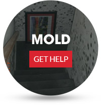 mold-button